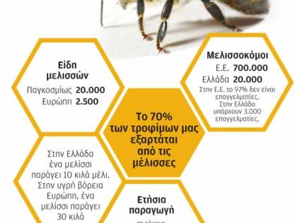 Παραγωγή μελιού σε Ελλάδα και Ε.Ε.