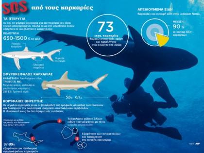 SOS από τους καρχαρίες