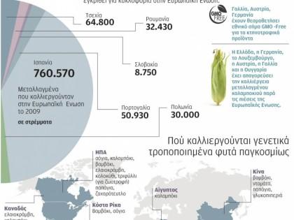 Καλλιέργεια και κυκλοφορία γενετικά τροποποιημένων