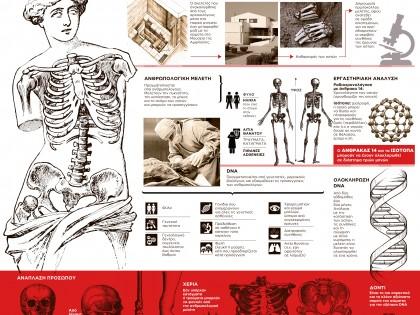 Τα μυστικά του σκελετού