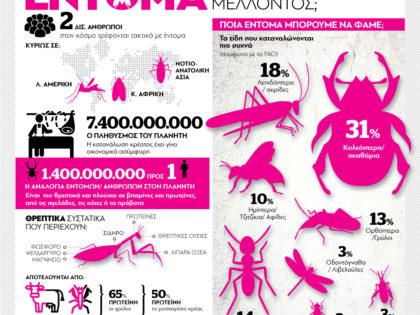 Έντομα – Η τροφή του μέλλοντος